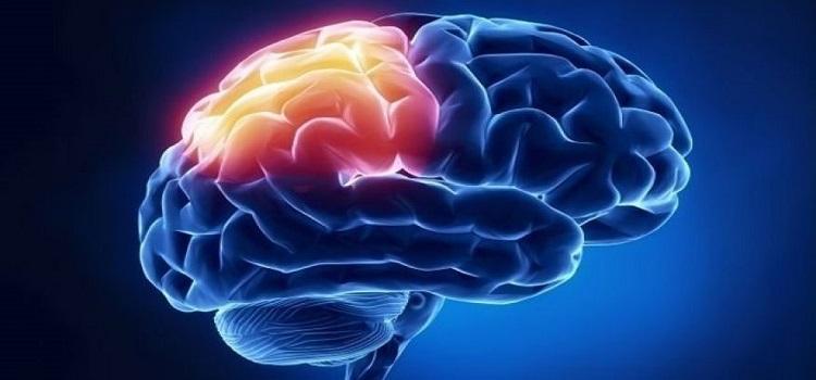 متخصص مغز و اعصاب در شریعتی| دکتر سیدشهاب الدین طباطبایی