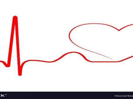بیمارستان تخصصی قلب|بیمارستان قلب بوشهر