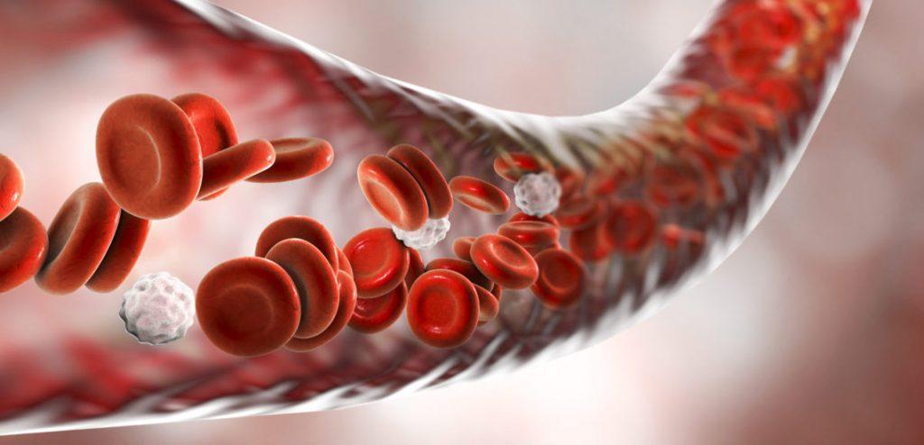 راهکارهای درمانی جهت افزایش پلاکت خون/درمان پایین بودن پلاکت خون