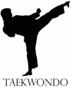 تفاوت های کاراته و تکواندو